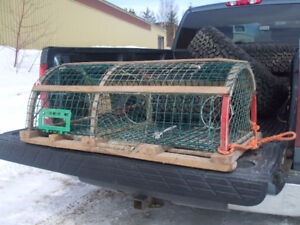 FREE LOBSTER TRAPS