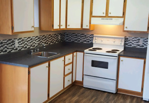 Centrally Located -Newly Renovated 2 BR Apartment