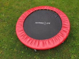 Indoor Workout Trampoline