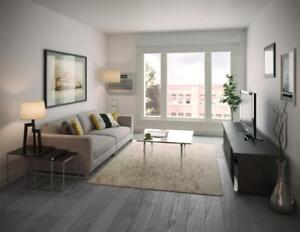 1 Bedroom - Starting From $1175 - Renovated - 10 Foot Ceilings