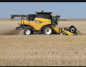 Wanted New Holland Combine CR 960-970 or Tr 98