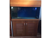 4x2x2FT FISH TANK & SUMP 550 LITRES WITH CABINET, HOOD AND PIPEWORK - DELIVERY - 07544000786