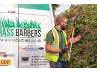Garden clearance/maintenance by gardener in South London/Surrey/Kent