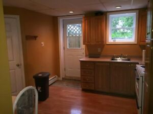 Bright 2 Bedroom Apt. for Rent - quick walk to MUN