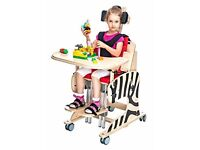 ZEBRA Positioning Chair for children with Special Needs (Size 2)
