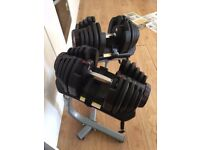 Bowflex 1090 Dumbells with Official Stand