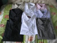 Eight 21 Inch Long Sleeved Brand New Cotton Shirts - Different brands:- £6.00 each