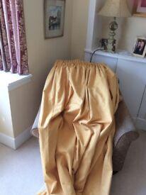 Gold colour curtain excellent quality