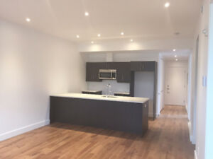 FULLY RENOVATED 5,5 IN THE HEART OF THE PLATEAU