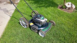 2 in 1 Lawnmower