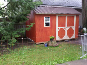 8 x 12 Storage Shed for sale.