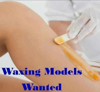 WAX MODEL NEEDED