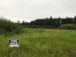 Large wooded acreage lot - Bilby Common Estates.