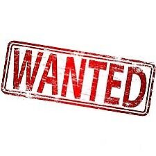 looking to earn extra cash