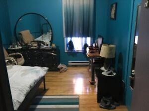 logement  4 et demis a loyer