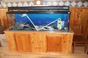 125 Gallon Aquarium With 55 Gallon Sump