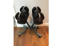 Bodymax adjustable dumbbells and stand