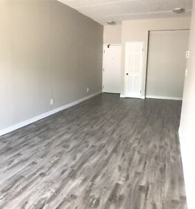 Beautiful Two Bedroom Downtown!