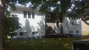 2+1 Bedroom home with large garage located in Elizabeth Park