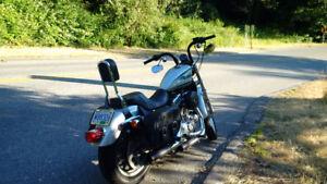 2005 Harley Sportster CUSTOM - Low KMs