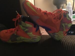 lebron james 9.5