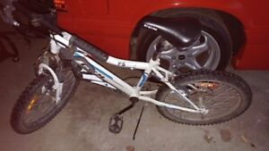 20 inch CCM kids mountain bike
