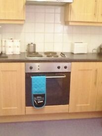 Double room available to rent in clean comfortable shared house , Taes Ave, off Lisburn Road