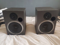 Event Recording Studio Monitors 20/20 Passive. Excellent condition!