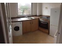 1 bedroom flat in dykebar area Paisley