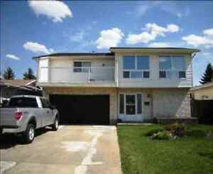 Just Renovated 4 Bedroom Bi-level Home with Attached Garage