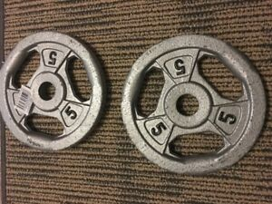 Hex Dumbbells + Lifting Plates + Dumbbell Handle with Collars