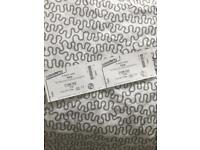 2 tickets for Passenger gig tonight (20th July) £40