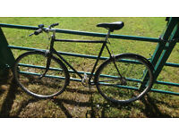 Dawes single speed fixie vintage bike large frame
