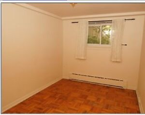 Spacious two bedroom apt for rent , lower level .