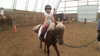 Only 1 week still available for summer kids horse camp
