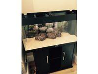 Juwel Rio 180 Fish Tank Aquarium