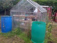 Greenhouse good condition