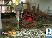 Get most out of your site, Concrete/House Demolition/Deconstruct