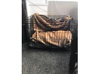 Small dog cage/crate never used