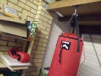Punchbag with gloves and hook set