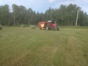 FRESH ROUND LARGE HAY BALES FOR SALE