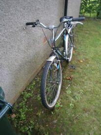 Mountain Bike Raleigh Magnum All Terrain