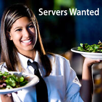 Server Wanted