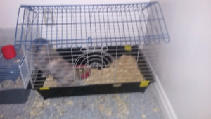 Medium sized cage for sale !!