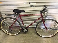 Excellent Ladies Specialized Bike