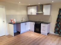 Newly refurbished large one bedroom flat/apartment available now