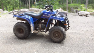 2004 yamaha 250 bear tracker