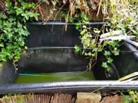 Pond kio carp fish pond pond pump