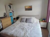 ~single double twin rooms available today~ low deposit