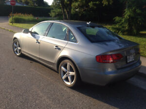 AUDI  A4 2.0T QUATTRO PREMIUM PLUS CONDITION A1